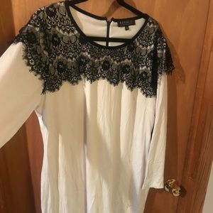 Eloquii lace embellished dress size 20